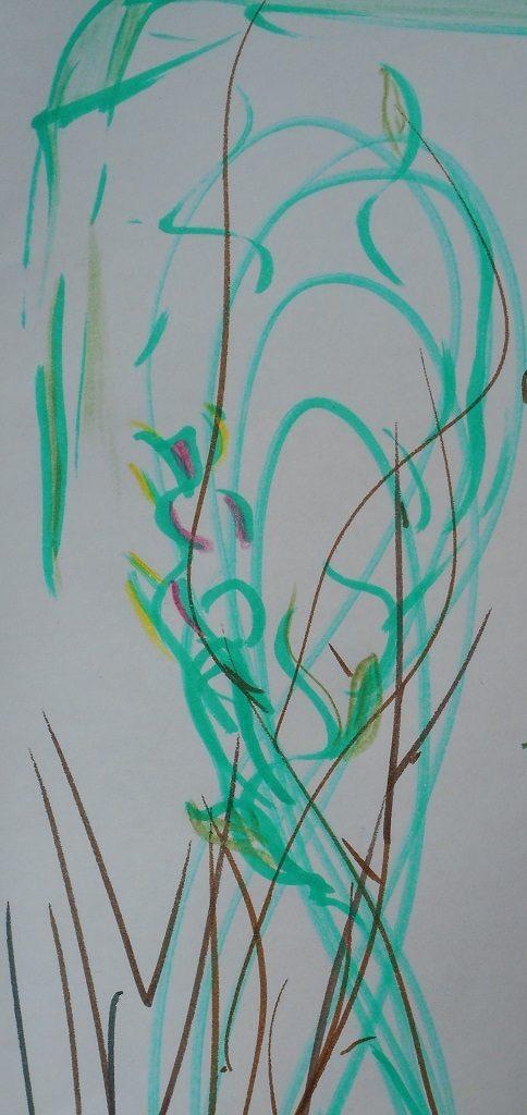 La révélation de soi de l'osier biologique à la vannerie